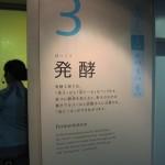 東京の府中にある「サントリー武蔵野ビール工場」へ工場見学に行ってきた〜その4 発酵、貯酒