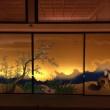 【名古屋城見学】復元された本丸御殿に感動した!空いている朝一の見学がおすすめ!